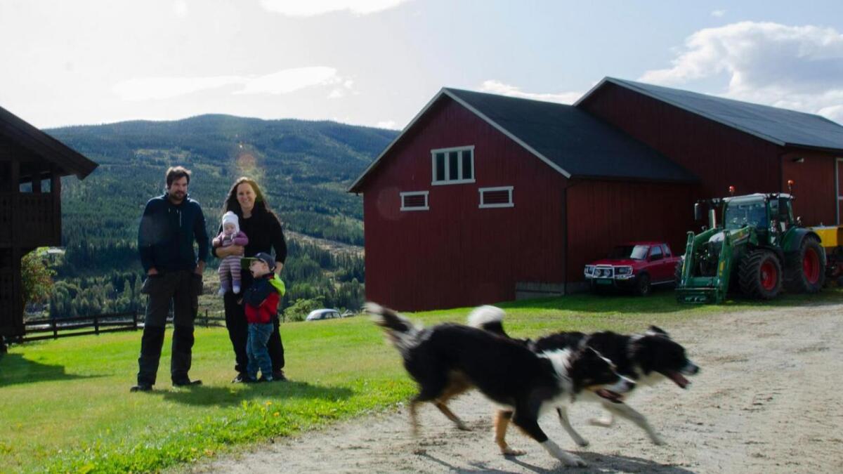 Sveinung Torsgard og Ingebjør Sørbøen Torsgard er blant dei 15 nominerte til å vinne «Årets unge bonde». Her er dei på heimgarden Leksvol i Øvre-Ål saman med sonen Håkon (3 år) og dottera Karoline (4 md.).