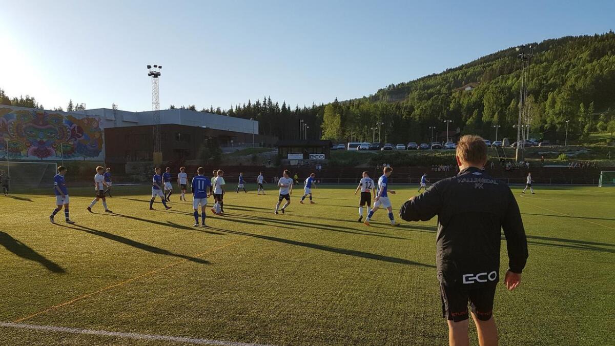Den aktive idretten i særidrettane blir ikkje råka av stiftinga av Viken idrettskrets.