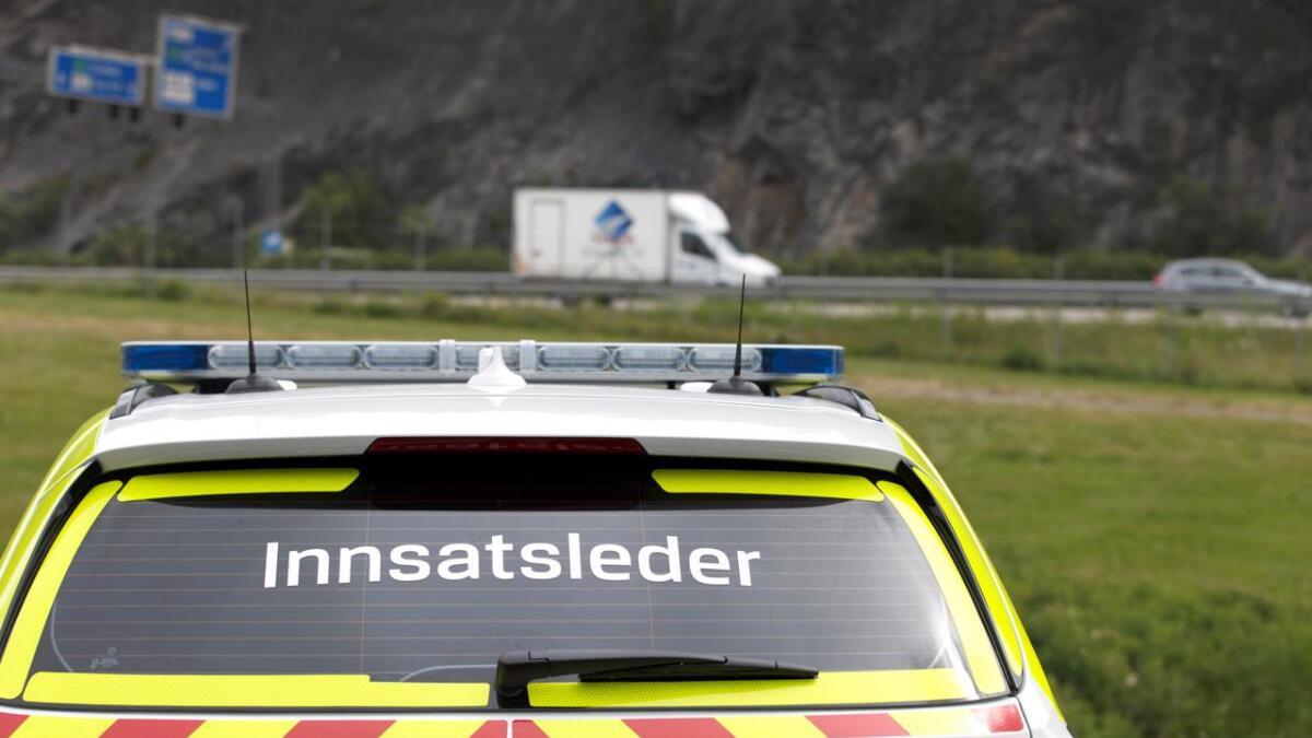 Politiet måtte rykke ut etter melding om elg på E18 i Risør. ILLUSTASJONSFOTO.