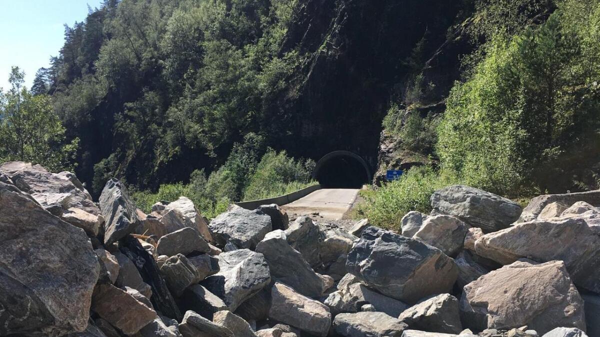 Vegbana både her ved Slottet og lenger inne i Mofjorden ved Stokkevika er no rydda.