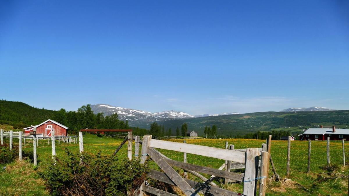 Tisleifjorden rundt ved Nøreli med utsikt til Skogshorn.
