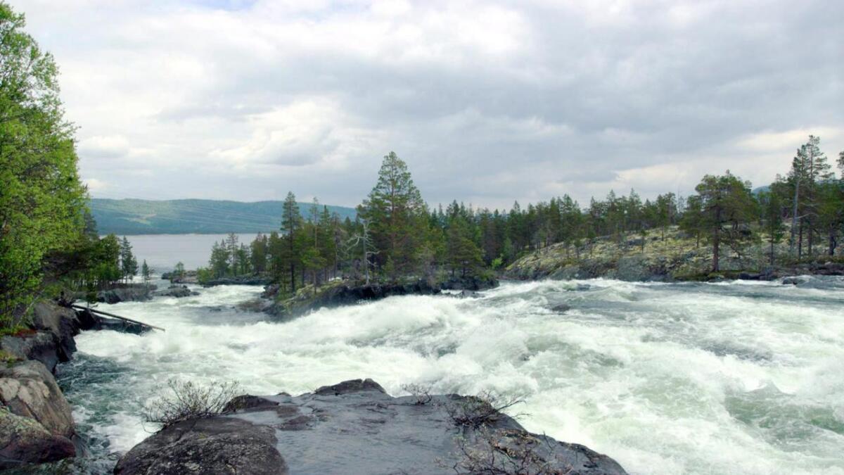Godfarfoss Kraft omfattar utbygginga av fallet i Numedalslågen frå Nedre Svangtjern til Pålsbufjorden.