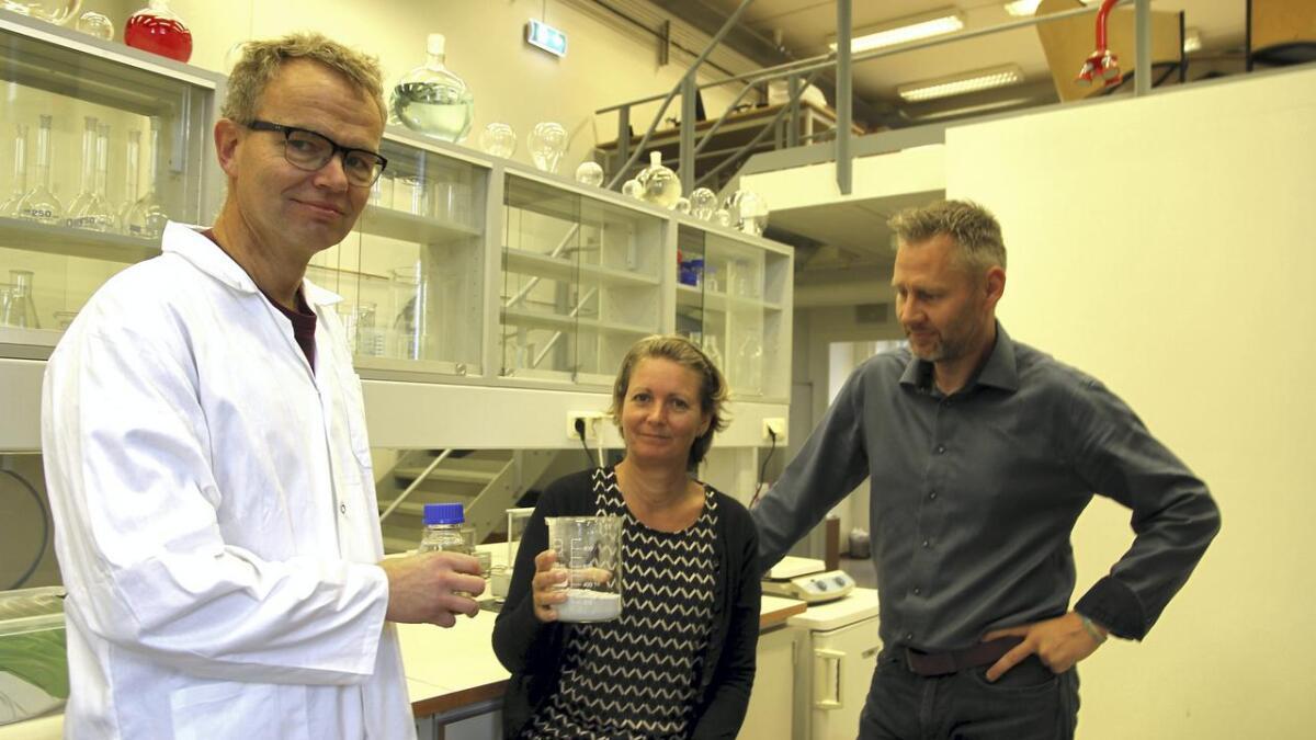F&U-sjef Per Bakke (t.v.), daglig leder Susan Heldal og markedssjef Albert Buer med flyveaske fra forbrenningsanlegg og syre som er en vesentlig del av renseprosessen for å felle ut metaller.