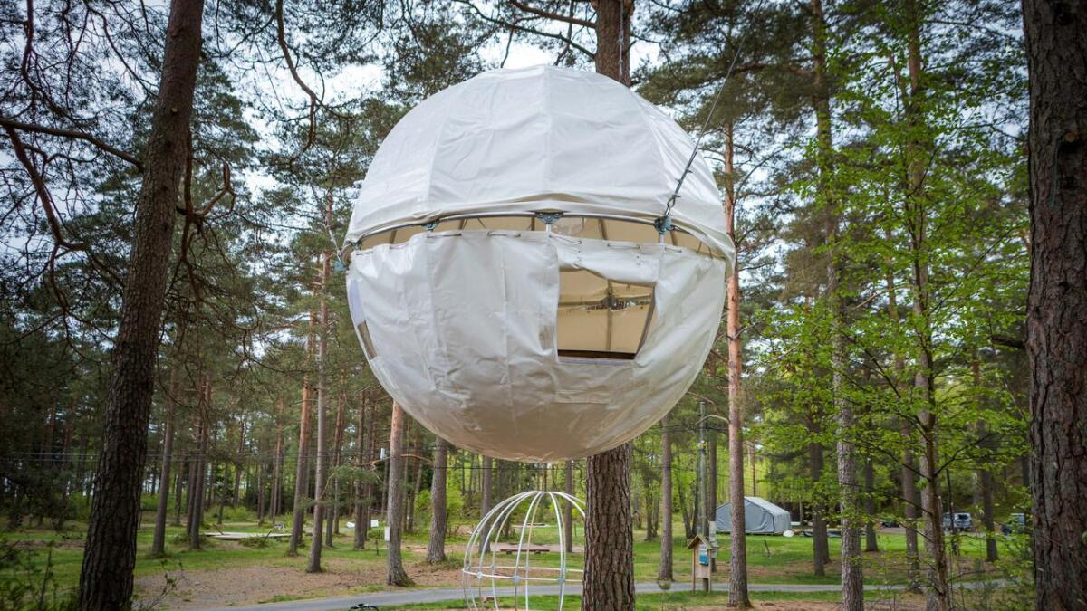 Her kan du sove i trærne på Canvas Hove. Artikkelforfatteren er kritisk til det som nå skjer på området.