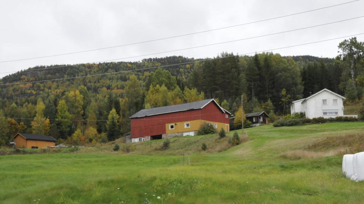 Cecilie Ziener Thronsen i Blommenholm har fått konsesjon på Vik øvre (bildet) og Tveitane nordre.