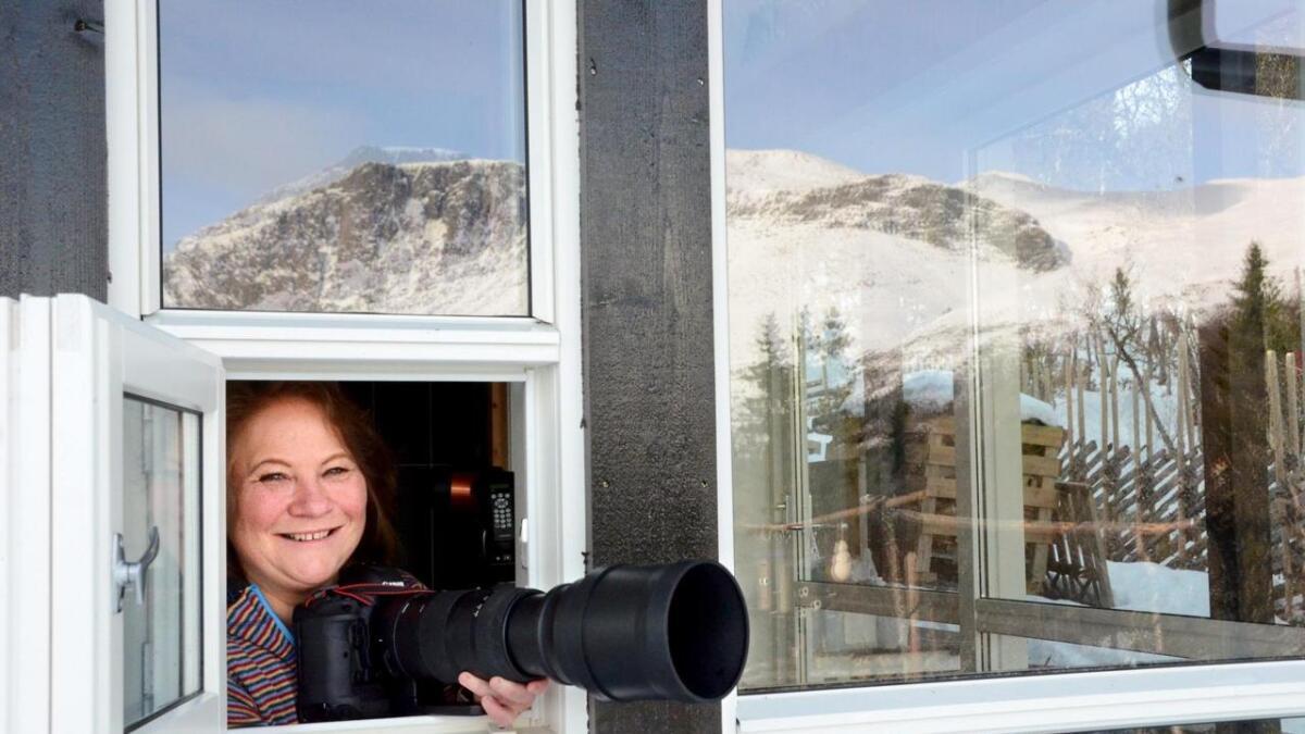 Kristin Devor i Helsinglia i Hemsedal fotograferer fuglar på fritida. Det har resultert i mange bilete.
