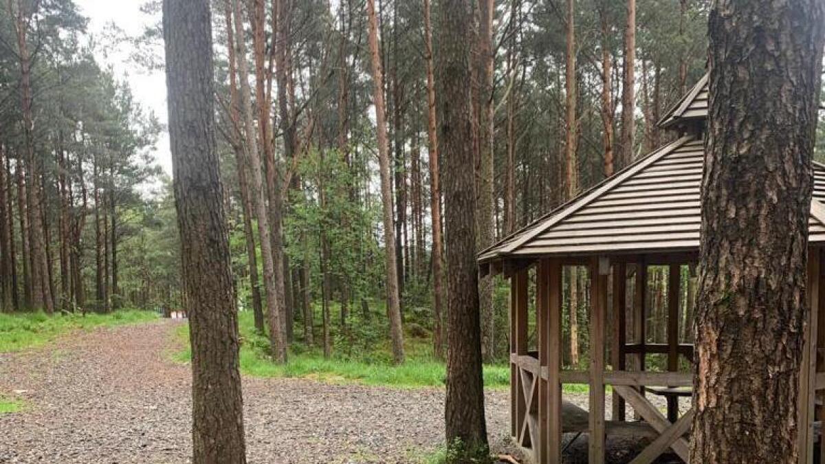 I skogen er ein gapahuk, den perfekte destinasjonen for ei utflukt. Ta med pølser til grillen og kakao på termosen og skap gode minner.