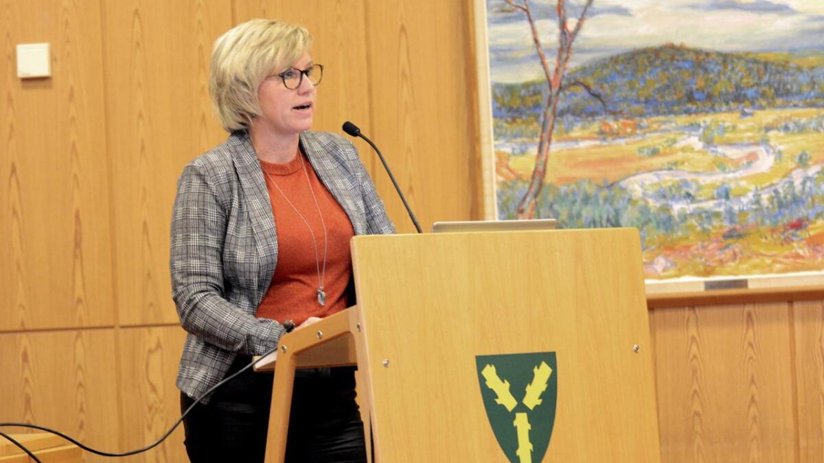 I møte med Nes-politikerne redegjorde Esvals styreleder Heidi Bruun Woldsnes for Esval Miljøparks situasjon.