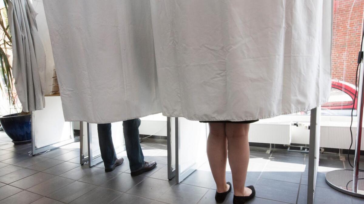 Velgerne får et vidt spekter av partier og kandidater å stemme på til høsten.