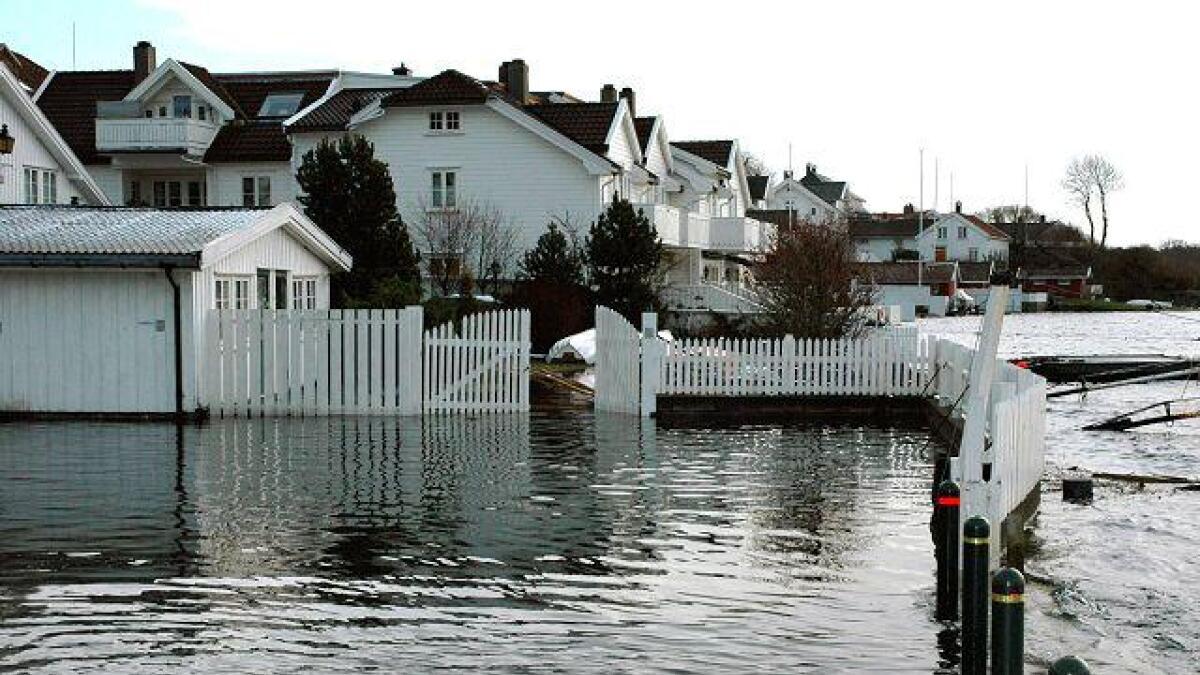 Den høye vannstanden gjør at beboere i hus nær sjøen nå er engstelige. dette bildet er fra Biodden i Grimstad.Dagfinn Grønlund