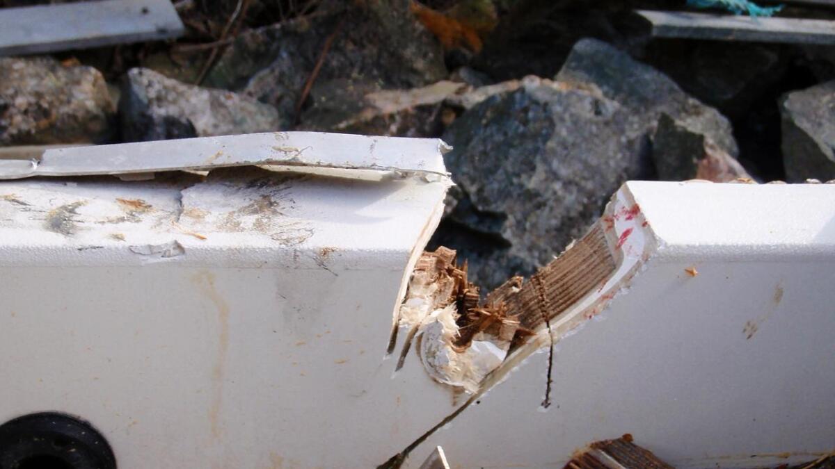 Tyvene er ikke redd for å skade båten din, for å fjerne motoren.