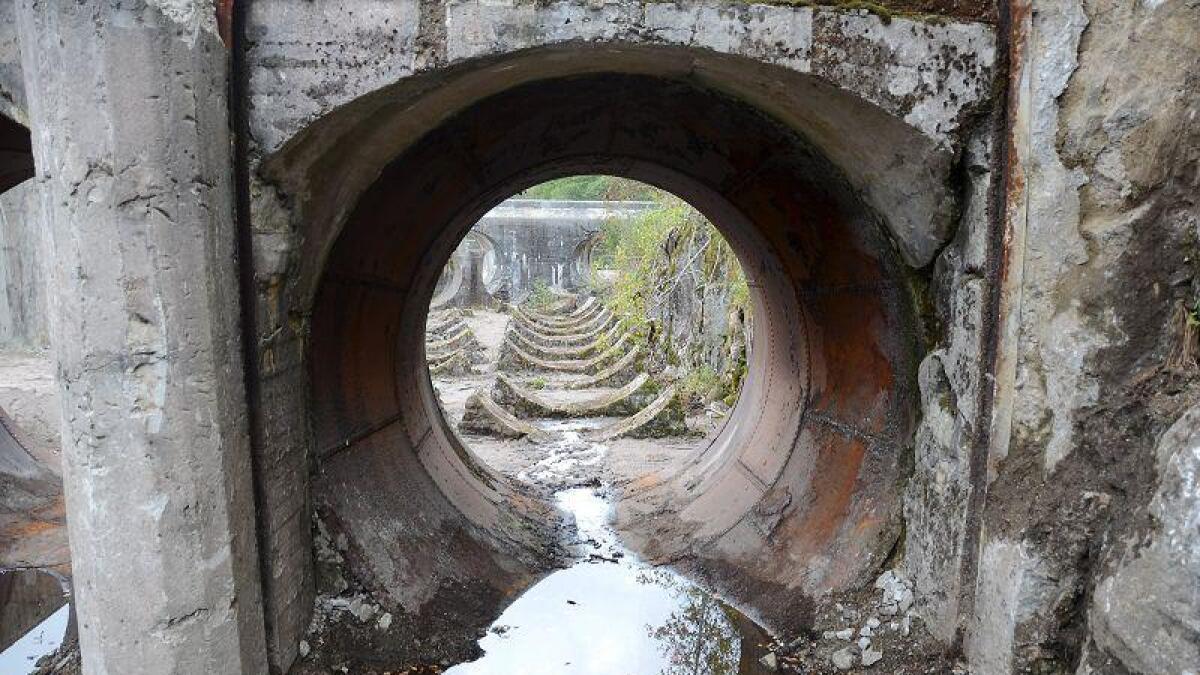 Det gamle kraftverket på Kringsjå som ble bygd i år 1900, er det første kraftverket til Agder Energi. Nå sikrer de hele området slik at det er åpent for almenheten og ønsker å tilrettelegge for at stedet brukes.