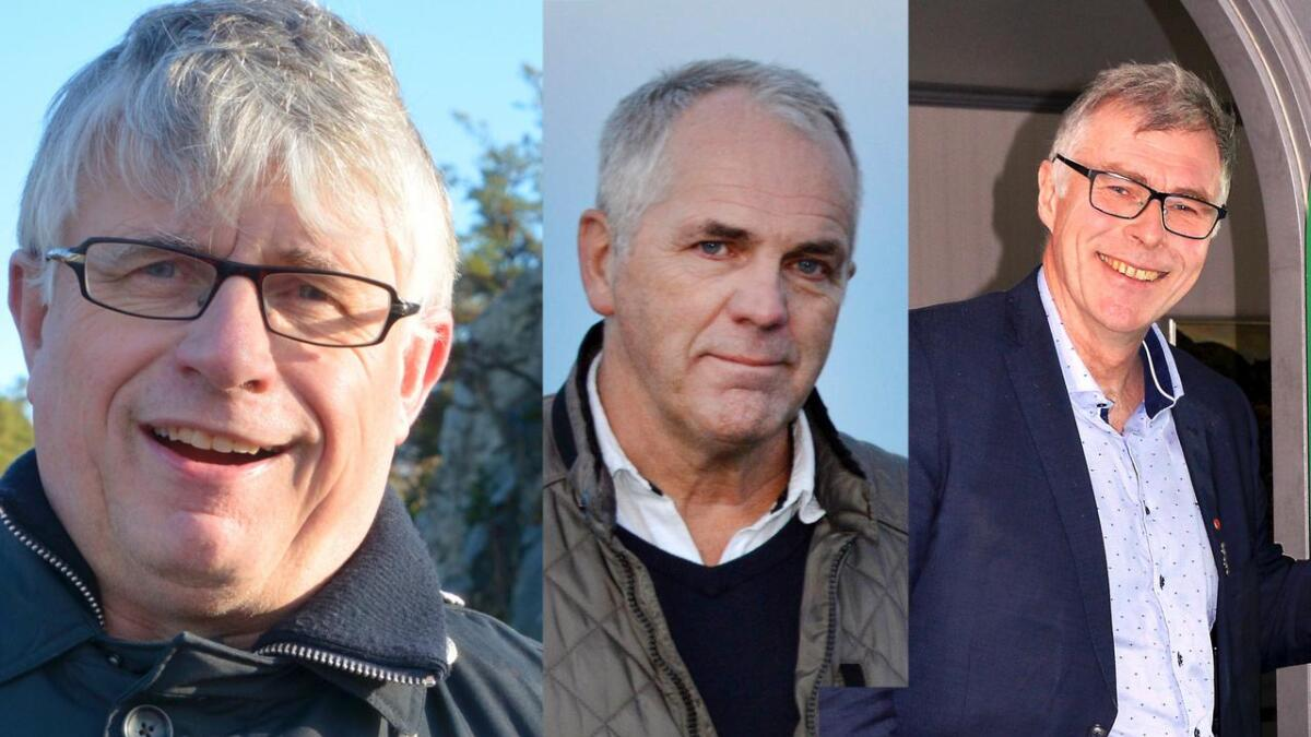 Arne Thomassen (H), Ove Gundersen (KrF) og Jon Rolf Næss (Ap) tjente alle over millionen i 2017.