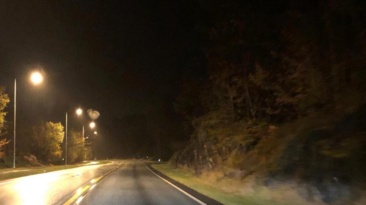 På Europavegen ved Grov kan ein dagleg sjå hjort langs vegskuldera. Spesielt etter mørkets frambrot likar hjortane seg her.