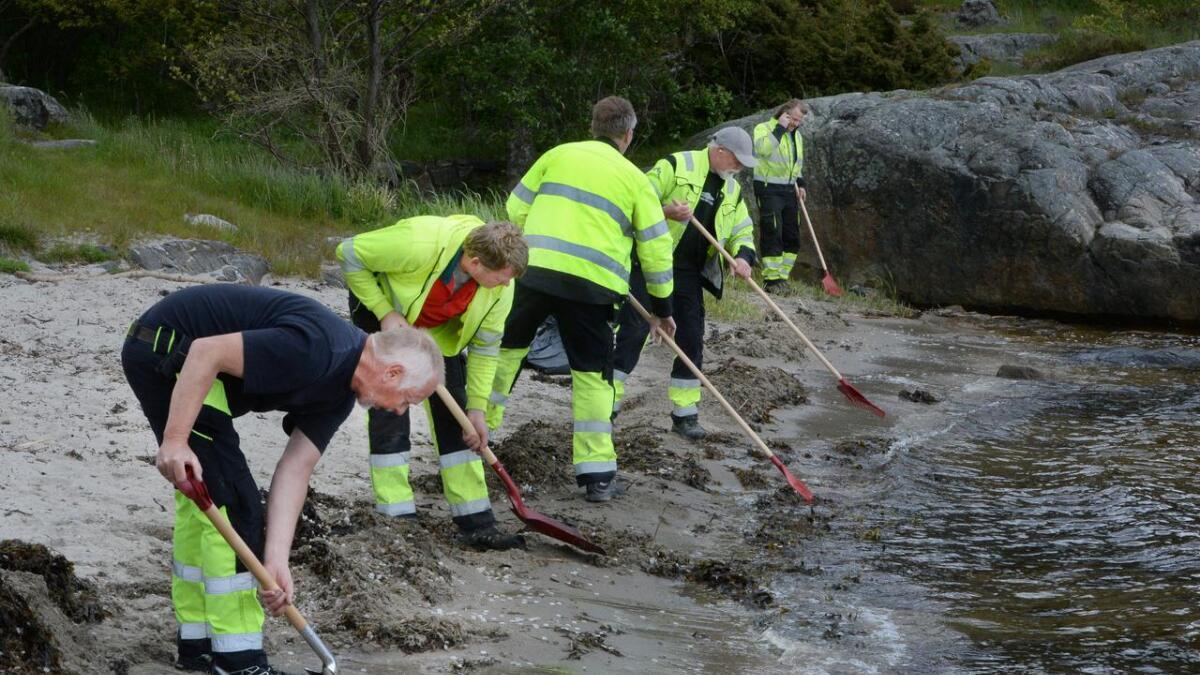 14 personer deltok i ryddearbeidet i Stølsviga og Flødevigen.