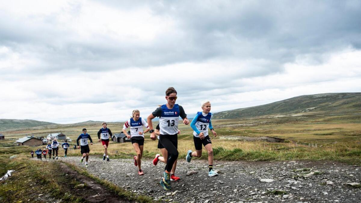 15 løparar kjempa for å kome fyrst til toppen av Prestholttrappa.