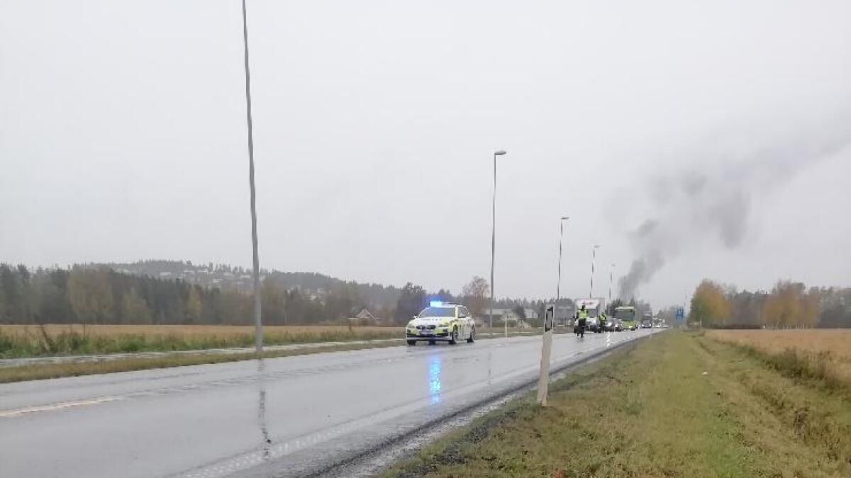 En elgpåkjørsel skapte trafikkaos på E16 ved Neskollen fredag ettermiddag. Elgen døde i sammenstøtet.