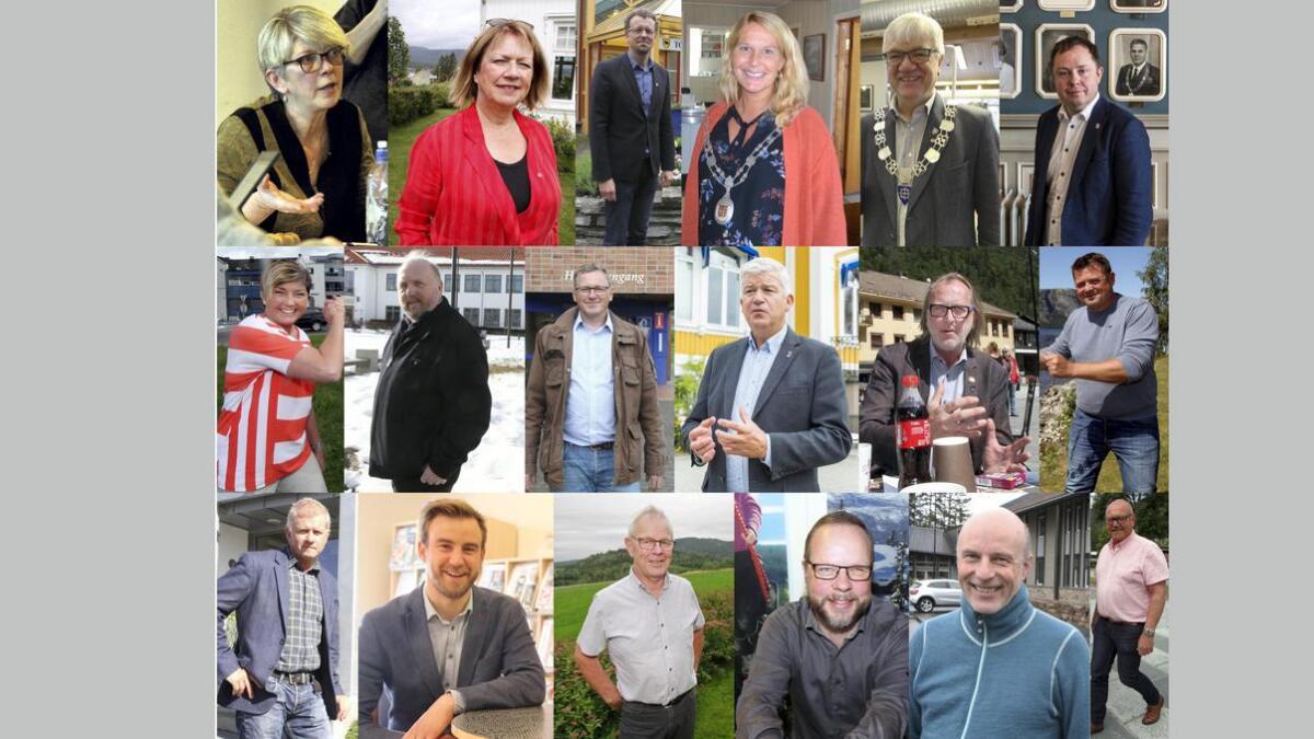 Disse 18 var ordførere i hver sin kommune i Telemark fram til valget. Noen beholder jobben, men alle er havner uansett i by- og kommunestyrene.
