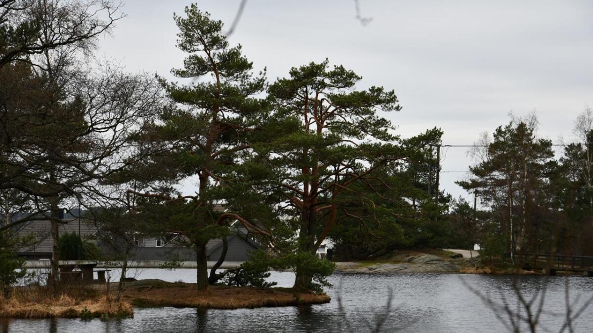 Lillesand kommune får tillatelse til å tappe Springvannsstemmen innen slutten av februar 2020.