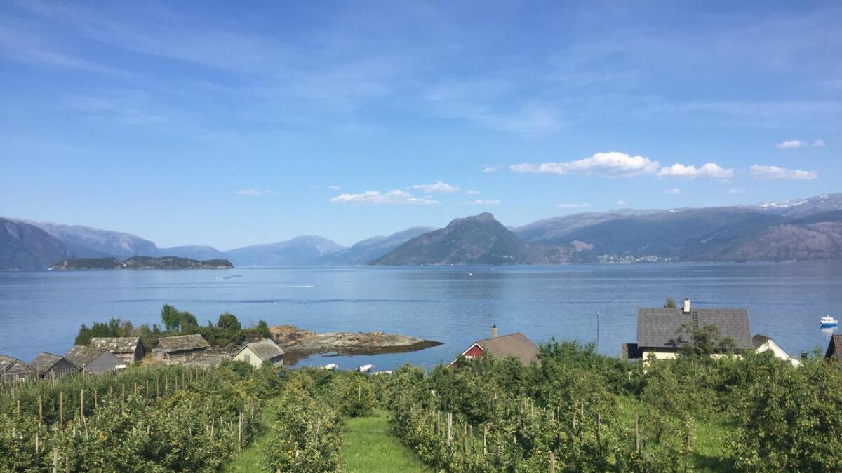 Kvamsøy ligg i Hardangerfjorden, til venstre i biletet. Her er det no opna for etablering av oppdrettsanlegg.