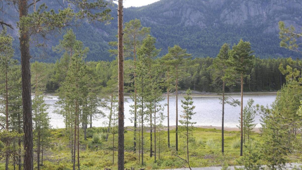 Reguleringa av Fyresvatn gjer at ein får meirkostnader på brua over til Kjeøyni. Båe