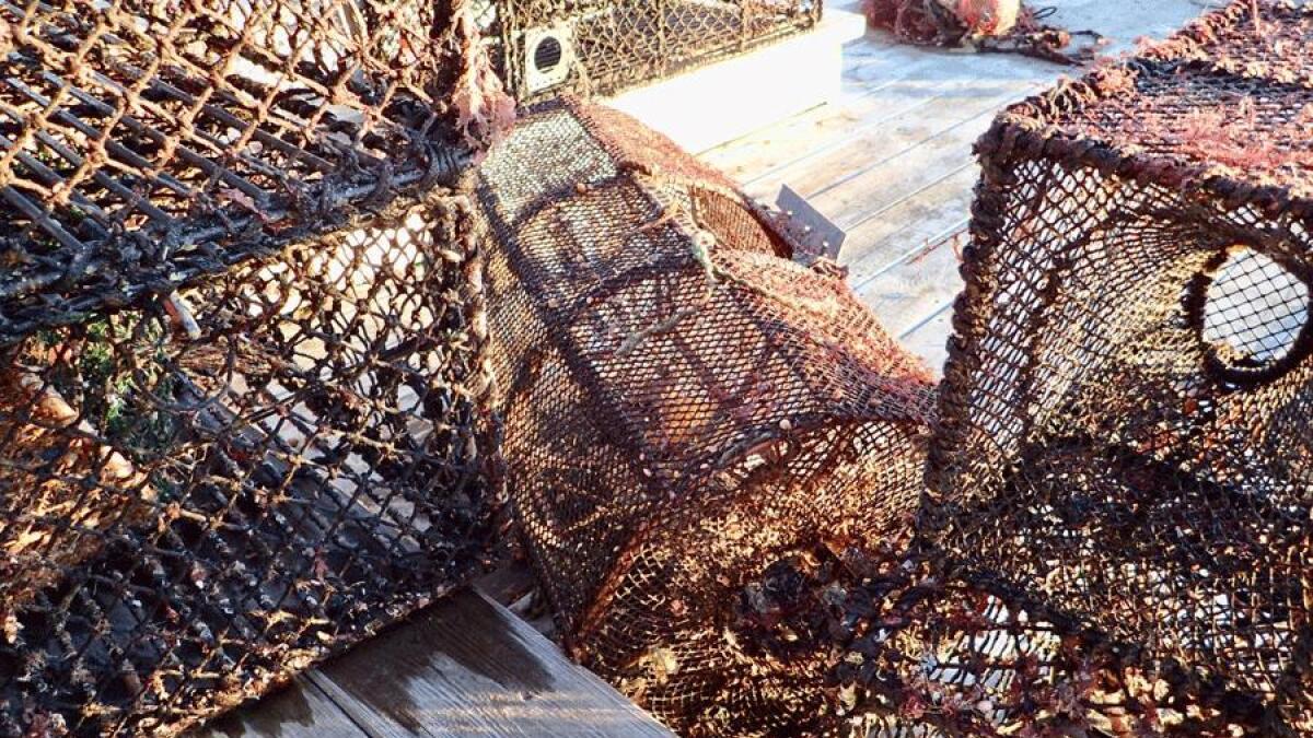 Over 2 300 tapte fiskeredskaper hentet opp så langt i 2019