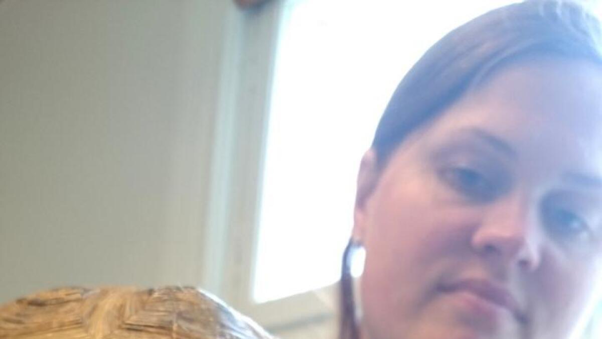 Landskilpadden Franz (30) fikk problemer med å spise da nebbet ble for stort. Da måtte dyrlegene ved Agder dyreklinikk pusse bort overbittet under narkose. Skilpadder er populære dyr og kan holdes av personer med tillatelse fra mattilsynet på grunn av allergi. På mattilsynets hjemmeside finnes mere informasjon om temaet.