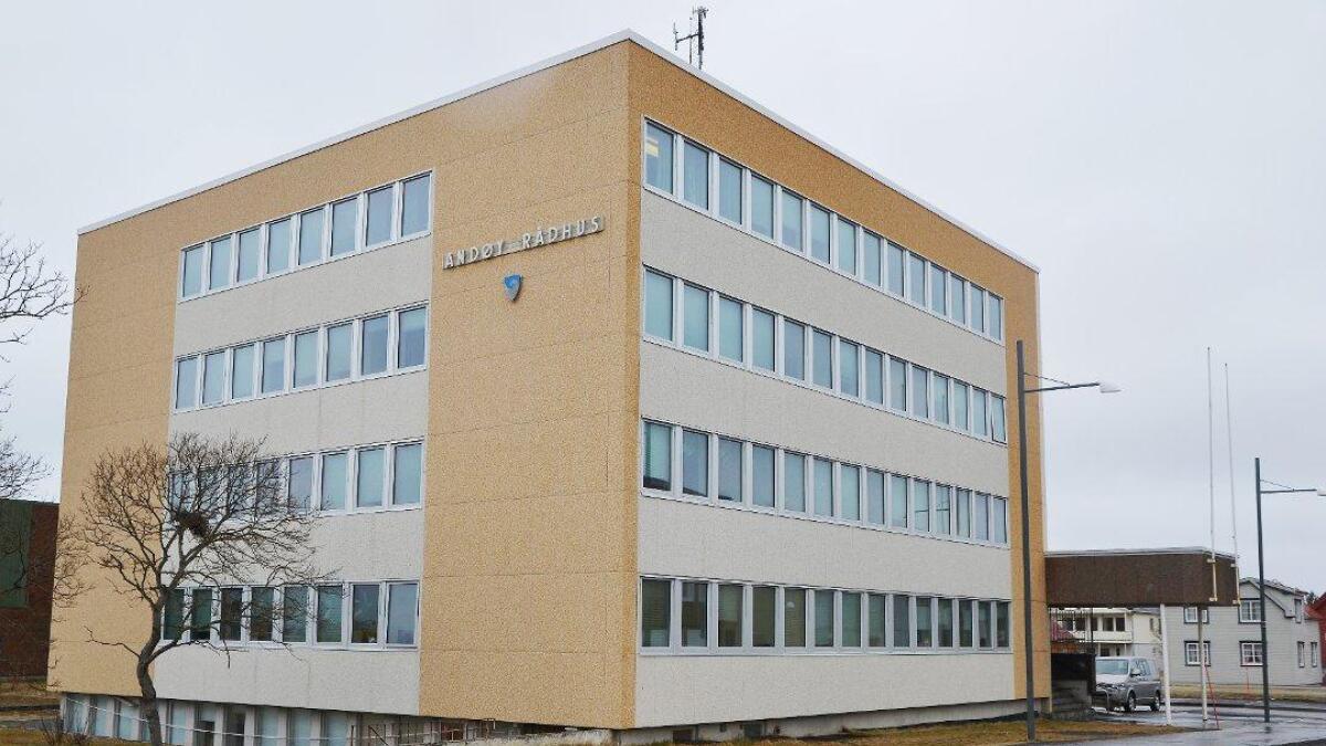 Andøy kommune får én million kroner i skjønnsmidler fra fylkesmann Tom Cato Carlsen.