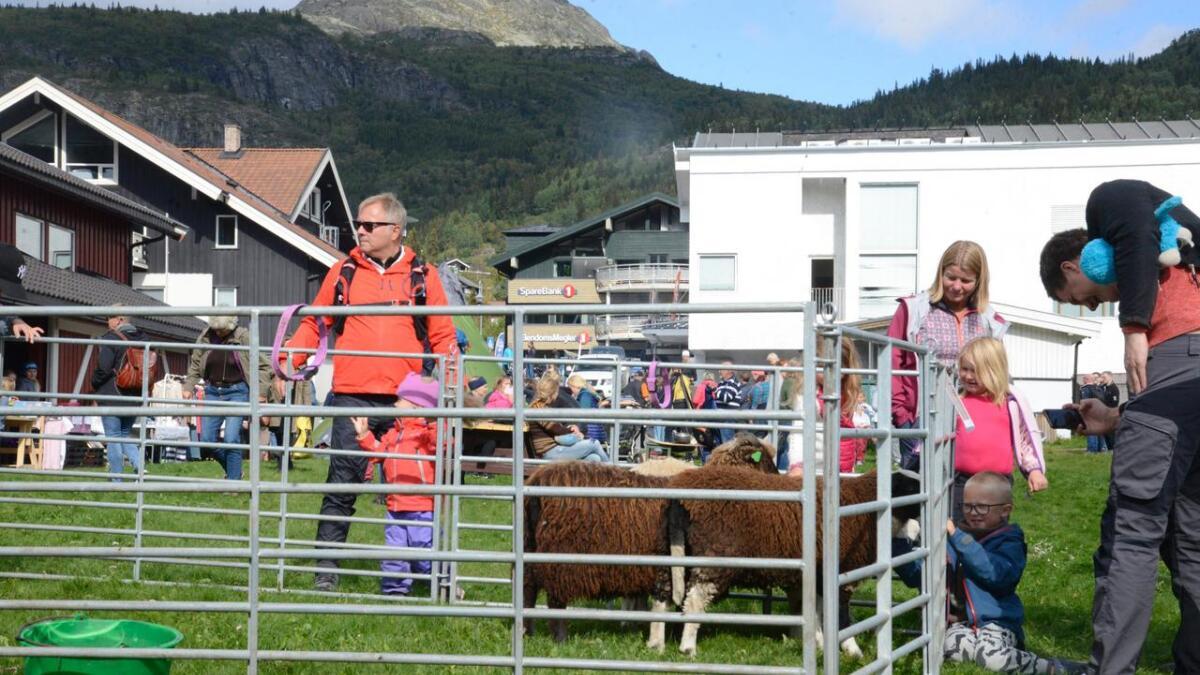 Dyr er fast innslag og alltid populært.