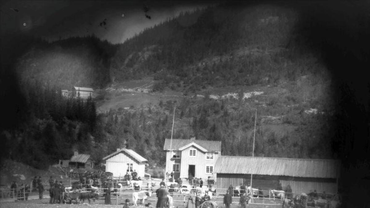 Fesjået på Morgen i Høydalsmo vara frå 1876 til midt på 1950-talet.