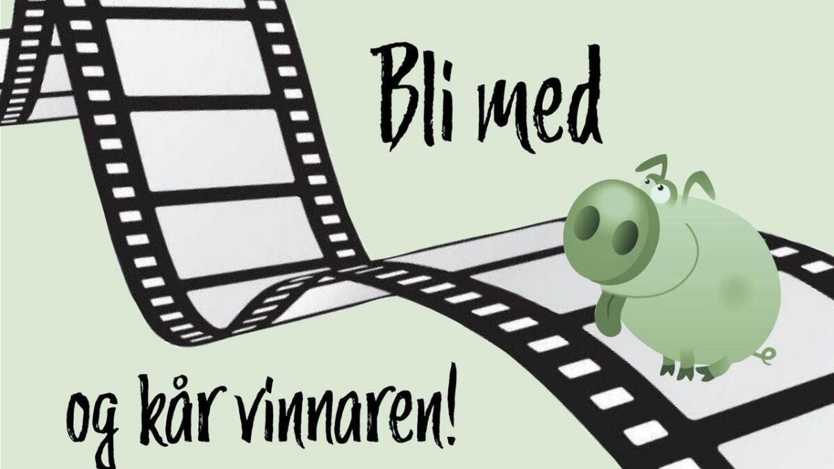 """Hjelp miljøgrisen """"Gasserten"""" å finna ut kven som skal vinna filmkonkurransen vår."""