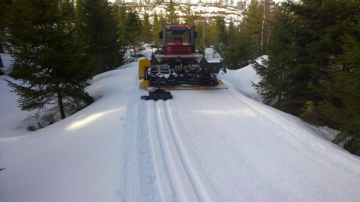 Erland Skogli melder at det er fine skiløyper i Fenstad-området.