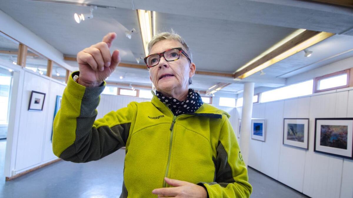 Kine Hellebust er ein multikunstnar som har sett spor både som skodespelar, songar, dramatikar og forfattar. Dei siste sju åra har ho jobba meir og meir som biletkunstnar. I Galleri Gol stiller ho ut fotografikk.