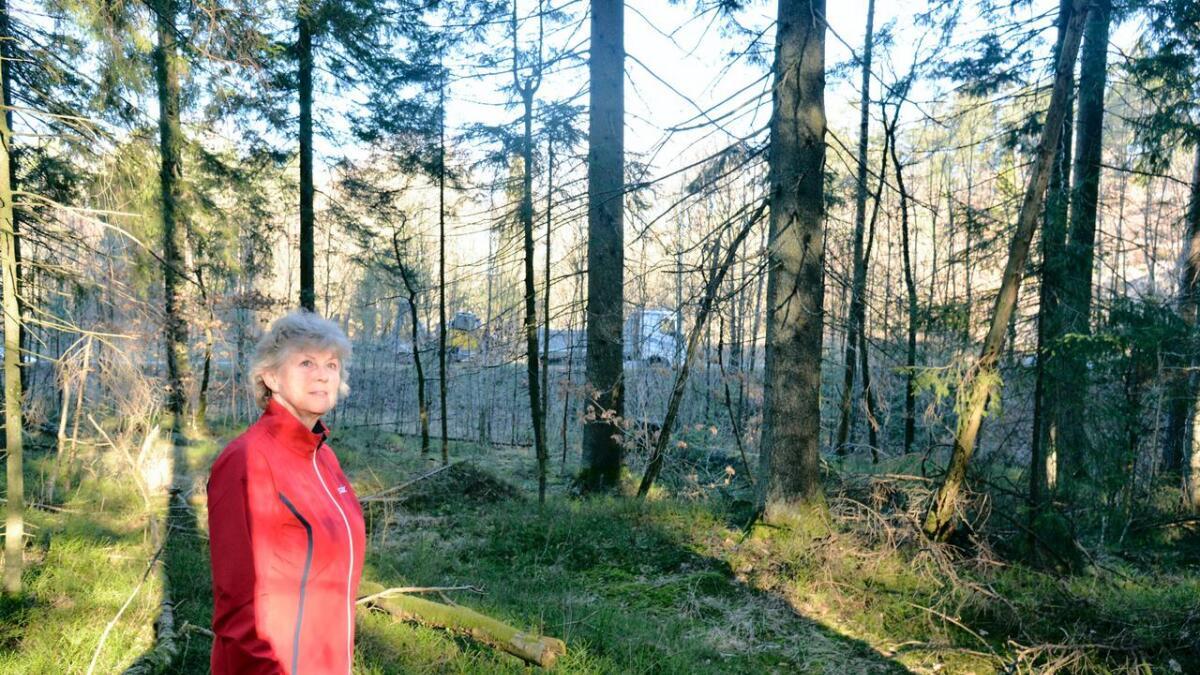 Artikkelforfatter Lisbeth Sætra er en ivrig turgåer og bruker lysløypa i Fevikmarka hyppig. Nå er hun redd deler av løypa skal bli byttet ut med firefelts motorvei. Bak henne skimtes dagens E18 - som både kan sees og høres fra dagens lysløype.