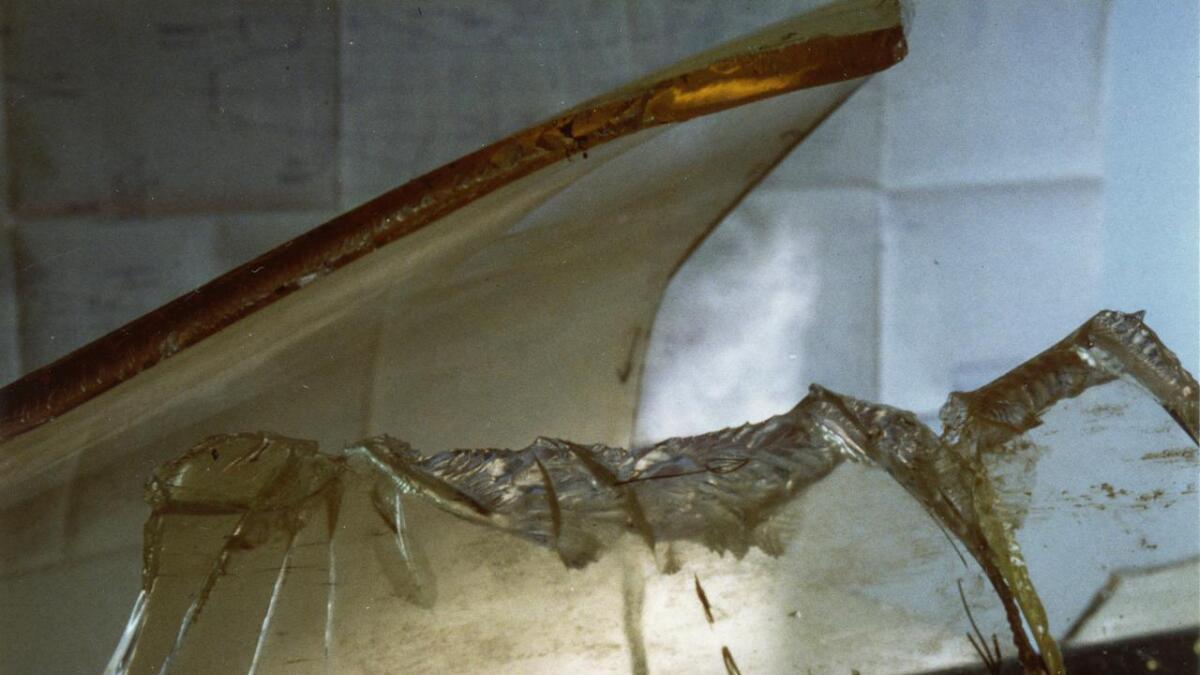 Cockpitdekselet som fuglen slo hol på er 15 millimeter tjukt. Det vart også bøygd innover i ei bølge som forplanta seg bakover heit til dekselet sprakk.