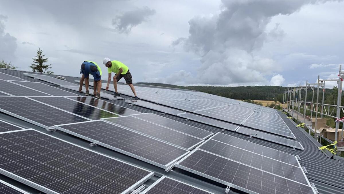 Den første kunden i banken som fikk innvilget grønt bedriftslån la solceller på halve potetlageret på en gård i Sørum.