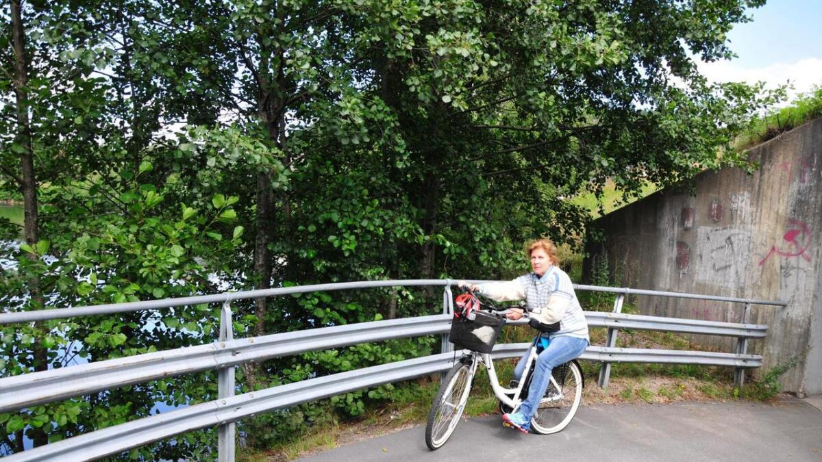 Beate Nygård henvendte seg for et år siden til Statens vegvesen om gjerdet langs gang- og sykkelstien fra Ålefjærkrysset til inngangen ved Hunsøya. Foto Anne Gunn Pedersen