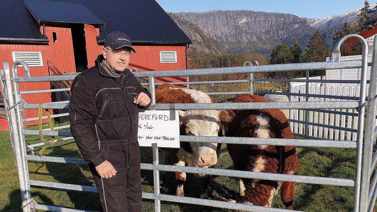 Knut Erik Paulsen byggjer flisfyringsanlegg saman med Knut Rike på Dale i Valle. No har dei fått eit tilskot på 285.000 kr. frå Innovasjon Norge sitt bioenergiprogram.
