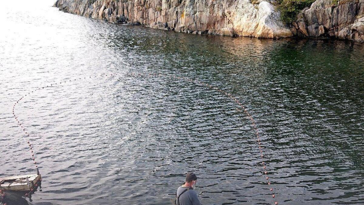Fisker Villy Hæstad reagerer svært negativt på at kommunen vil legge vann- og avløpsledninger gjennom en mye brukt kasteplass i  Kvåsefjorden. ARKIVFOTO