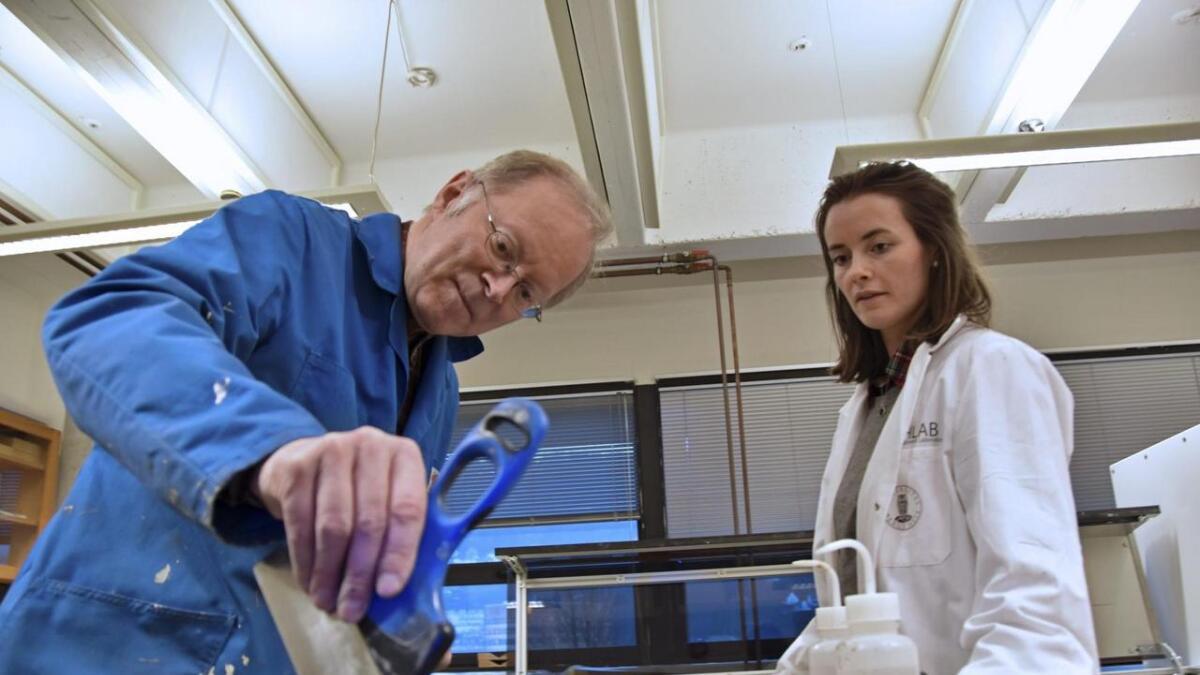 Haflidi Haflidason og Julie Zweidorff har fått kjerneprøvane inn i laboratoriet på UIB.