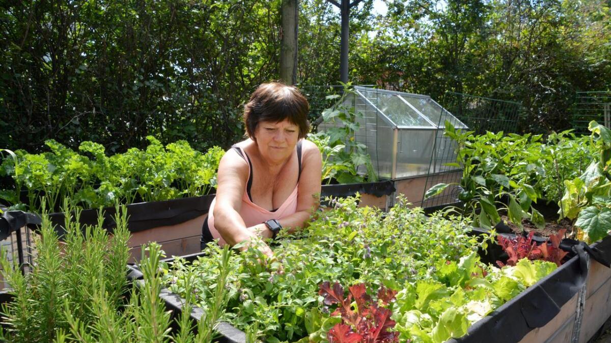 Som arbeidssøkende har Ingebjørg Godskesen god tid til å dyrke urter og stelle i hagen, og selv om det er hyggelig sommersyssel, vil hun aller helst i jobb.