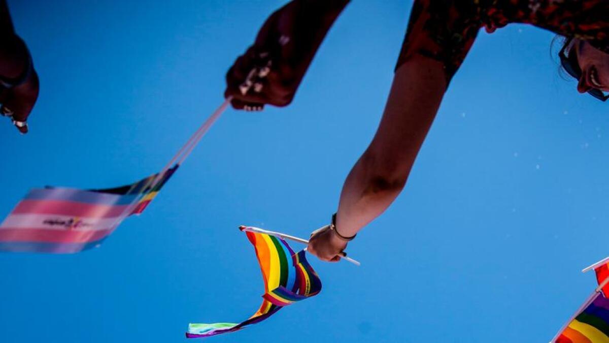 Regnbeflagget under Oslo Pride Parade.