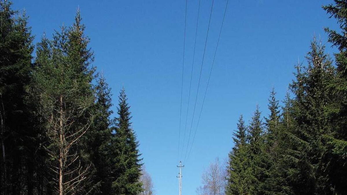 No kjem Agder Energi med tilskot til skogeigarar som høgg nær kritiske høgspentlinjer.