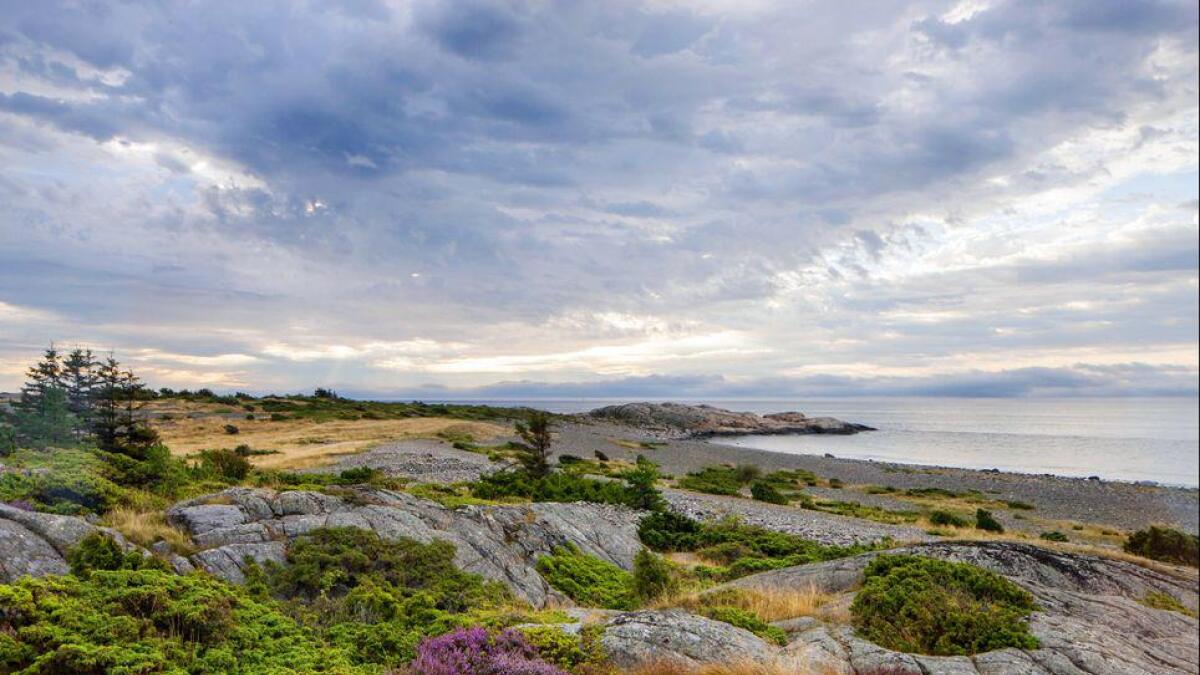 Raet nasjonalpark, Spornes på Tromøy.