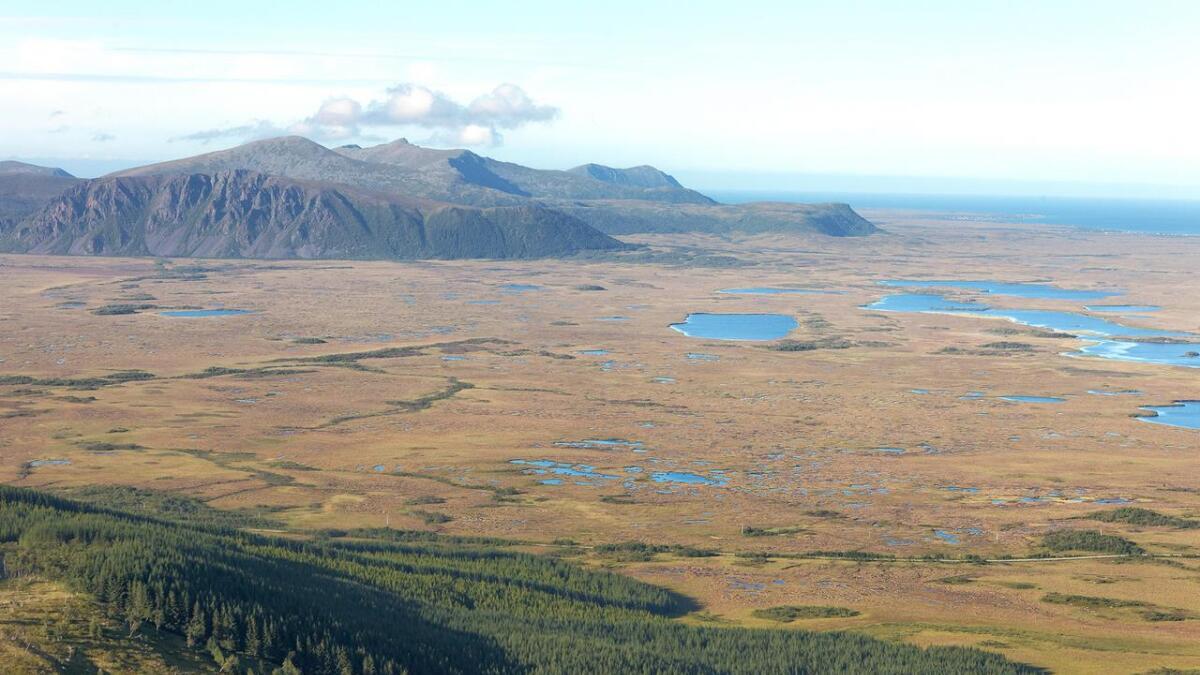 Konsesjonsområdet til Andmyran vindpark ligger til høyre for fjellene i øvre del av bildet. Dette er Norges største sammenhengende torvmyr som Norge har et internasjonalt ansvar for å ta vare på.