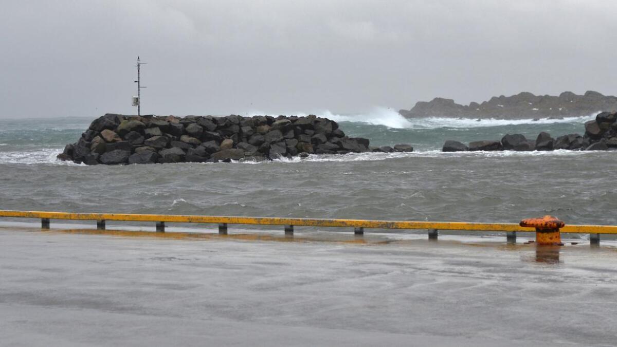 Over 20 meter av moloen i Steinesjøen ble borte i vinter.