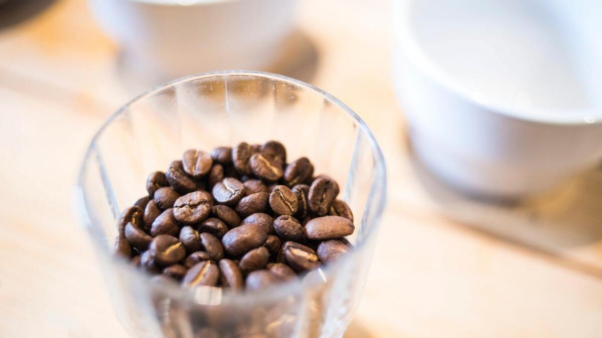 Om ein ventar med å kverne bønnene til rett før sjølve brygginga får ein den beste kaffien.
