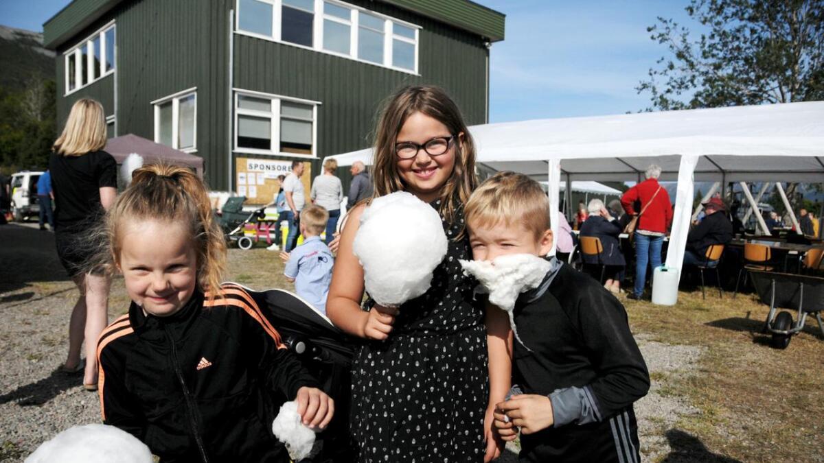 Wilma Myrebø (6) Malin (9) og Knut Mathisen storkoser seg  på Flesnes i fest.