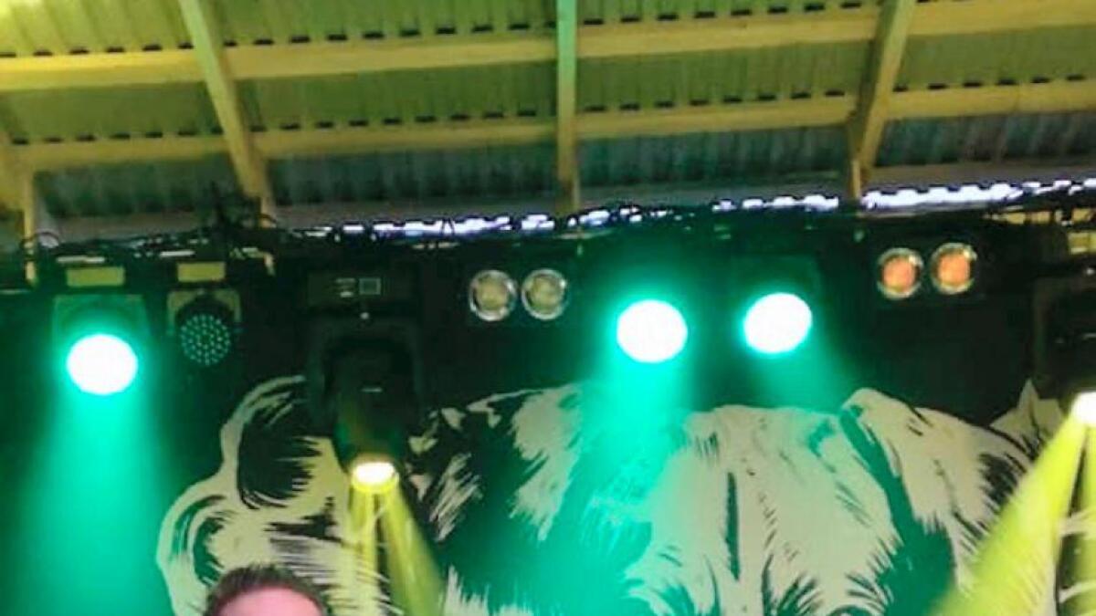 The Dogs med Kristopher Schau har ikke bare sitt eget kumlokk. Nå er også Løddepønk wakestockfestival dedikert til bandet.