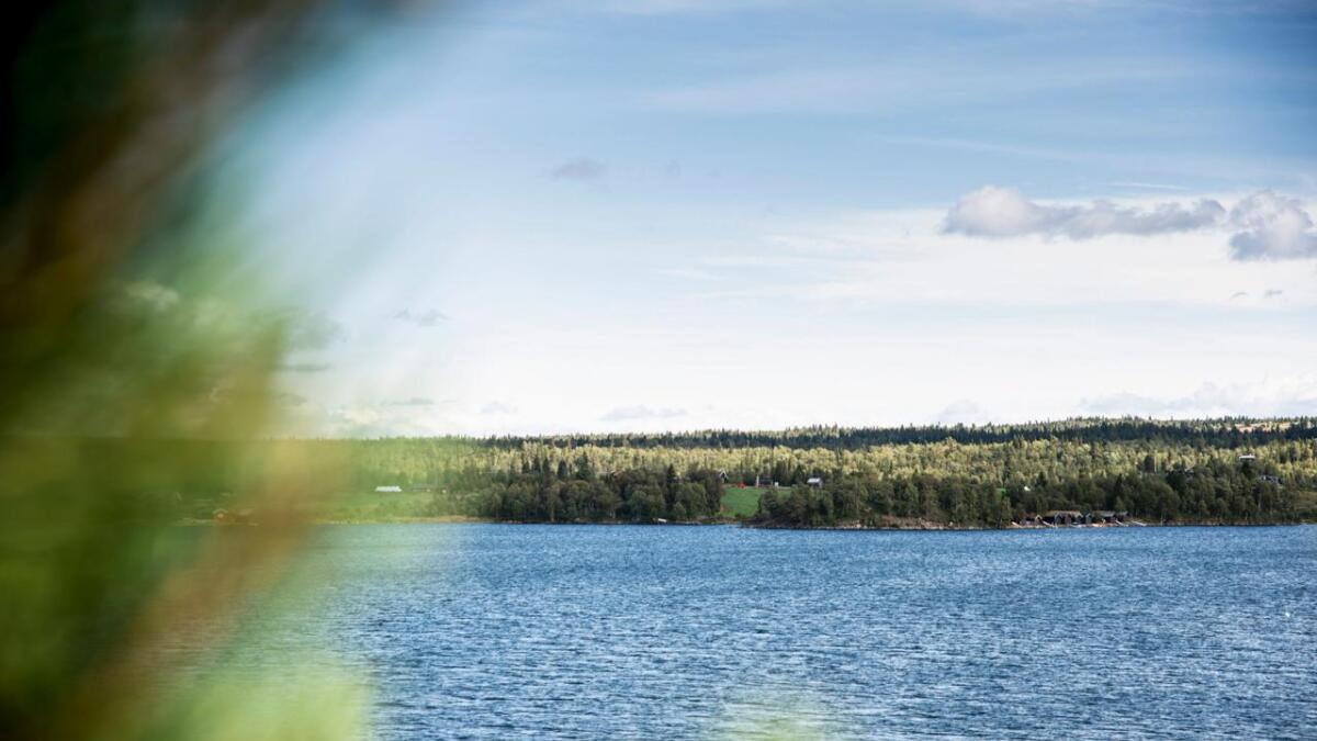 Stølen Naustdokken ligg på solsida av Tisleifjorden i Nord-Aurdal kommune. Politikarane i Gol sa i august ja til å dele frå støl, med slåttemark, frå hovudbruket, småbruket Solli i Åsgardane.